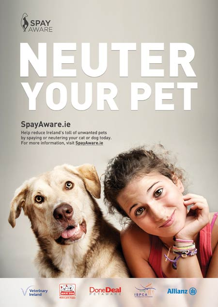 Dog-Spay-Aware