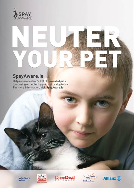 Spay-Aware-Cats-2014